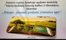 """Jonavos rajono bendrojo lavinimo mokyklų 7-tų klasių mokinių nuotolinė viktorina """"Knyga – pasaulį girdanti išminties upė"""""""