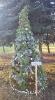 Progimnazijos eglutė - Kalėdinių eglučių miestelyje